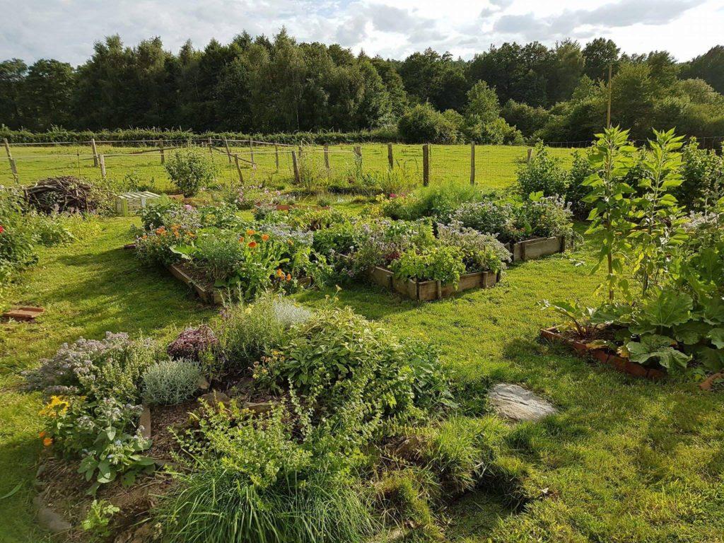Entretien d'espaces verts sur Toulouse