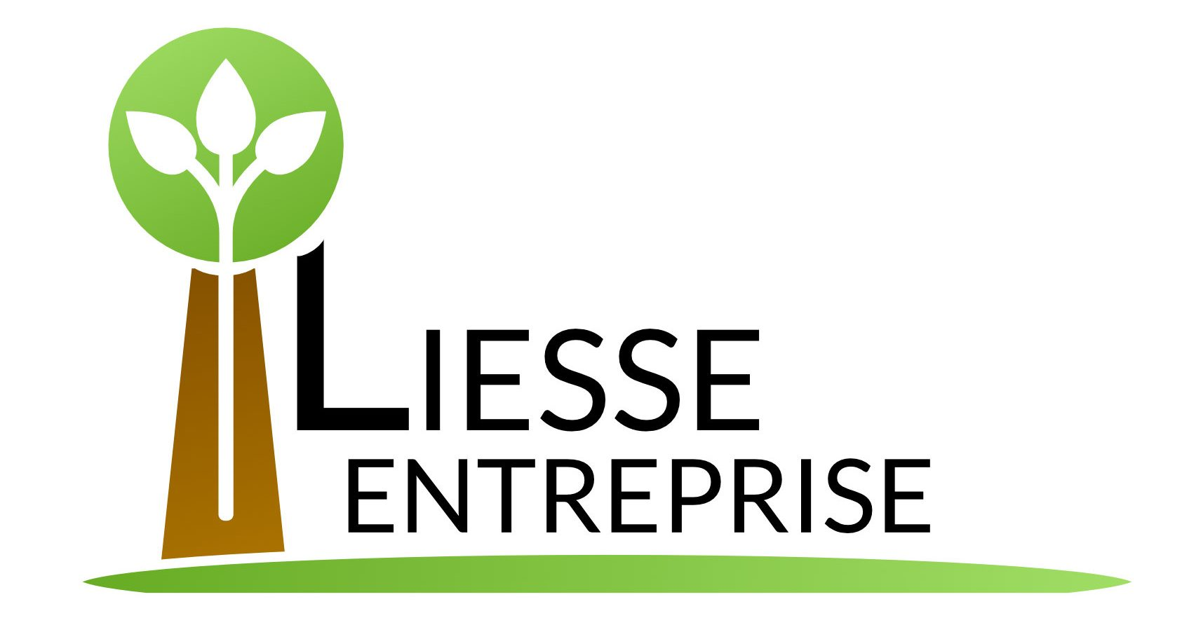 Liesse Entreprise